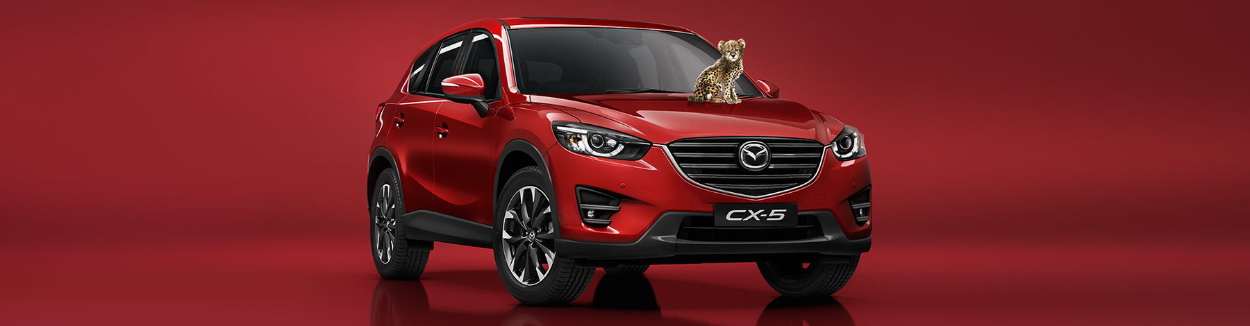 Search our Mazda CX-5 range