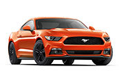 New Ford Mustang, Peter Warren Ford, Warwick Farm