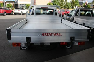 2019 Great Wall Steed Cab Chassis.